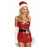 Dreamgirl Sequined Santa Dress