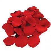 Seductive Red Rose Petals