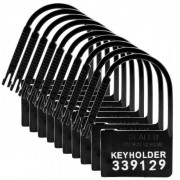10 Pack of Locks for Chastity CB3000 Device.