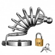 Asylum 6 Ring Stainless Steel Locking Chastity Cage